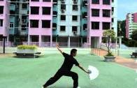Episode 1: Kungfu Tai Chi Fan (功夫太极扇)