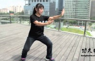 Episode 1: Tai Chi for Beginners (太极轻松入门)