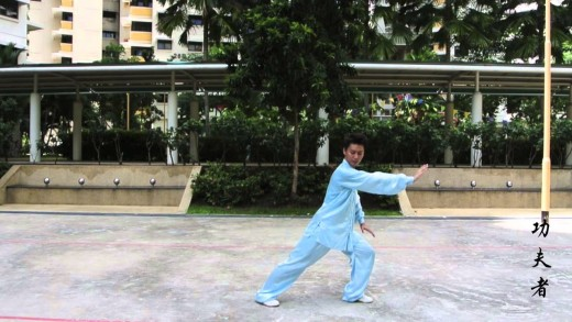 Episode 2: 8 Movements Tai Chi (八式太极)