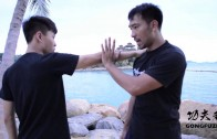 Episode 2: Grappling Techniques (擒拿技巧)