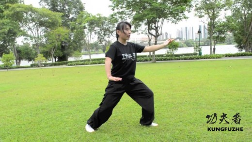 Episode 4: Tai Chi for Beginners (太极轻松入门)